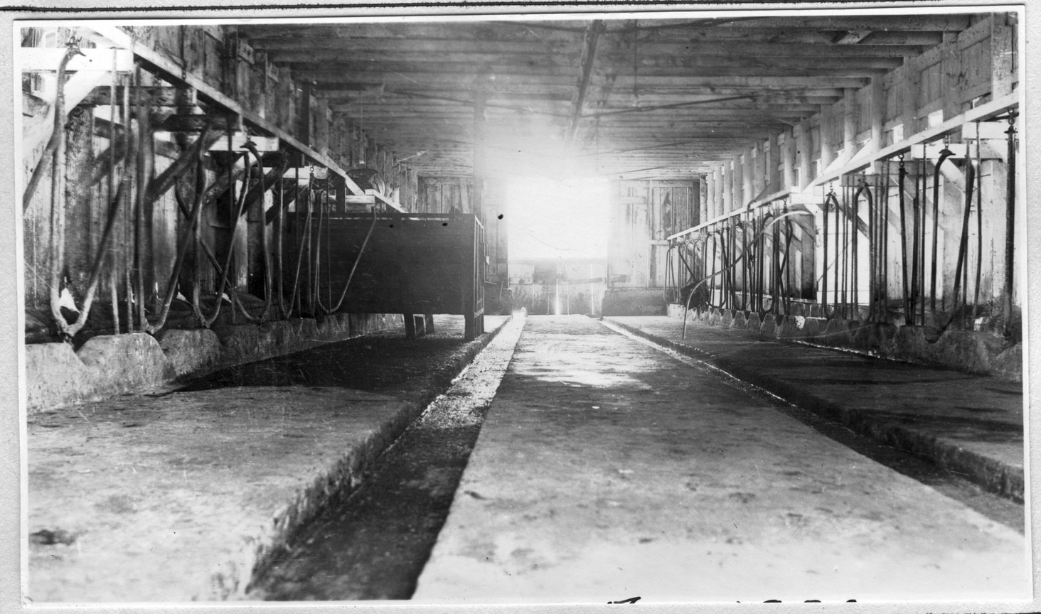 115~Mrs. A. R. Phelan Barn Interior Aug 1920.jpg