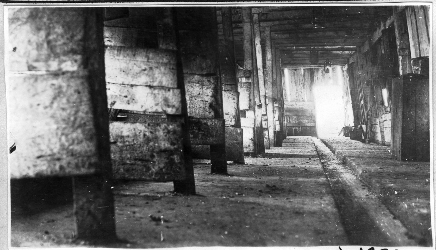 118~A. M. Yeary Barn Interior Aug 1920.jpg