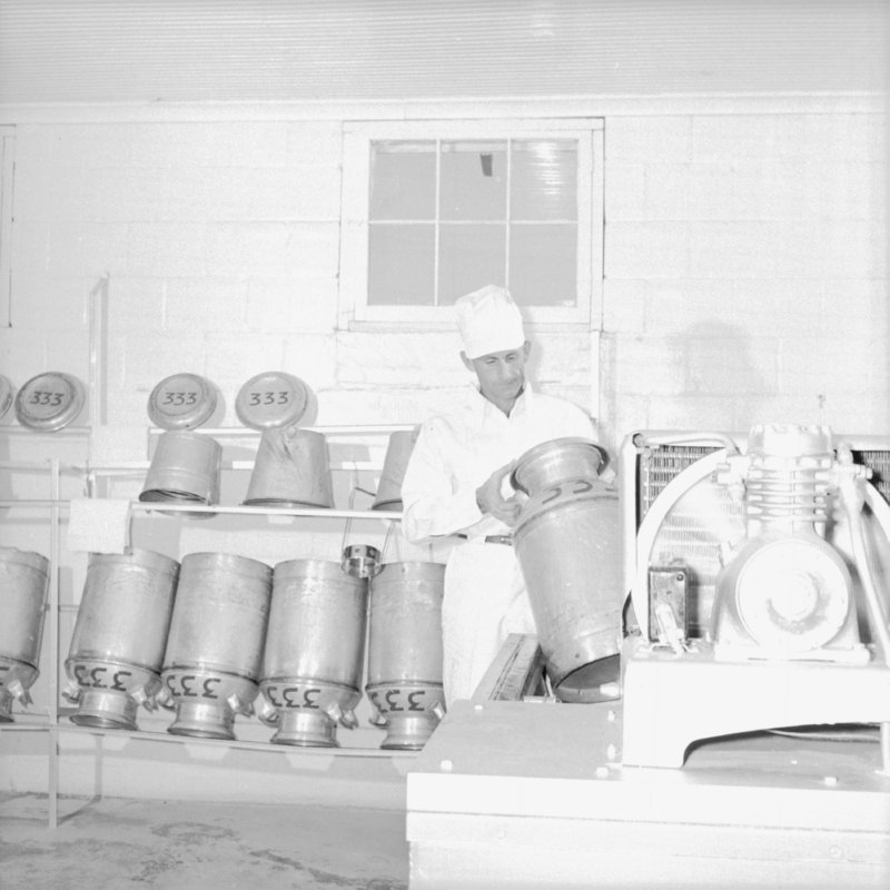 043_and placed them in refrigerators,... (1954).jpg