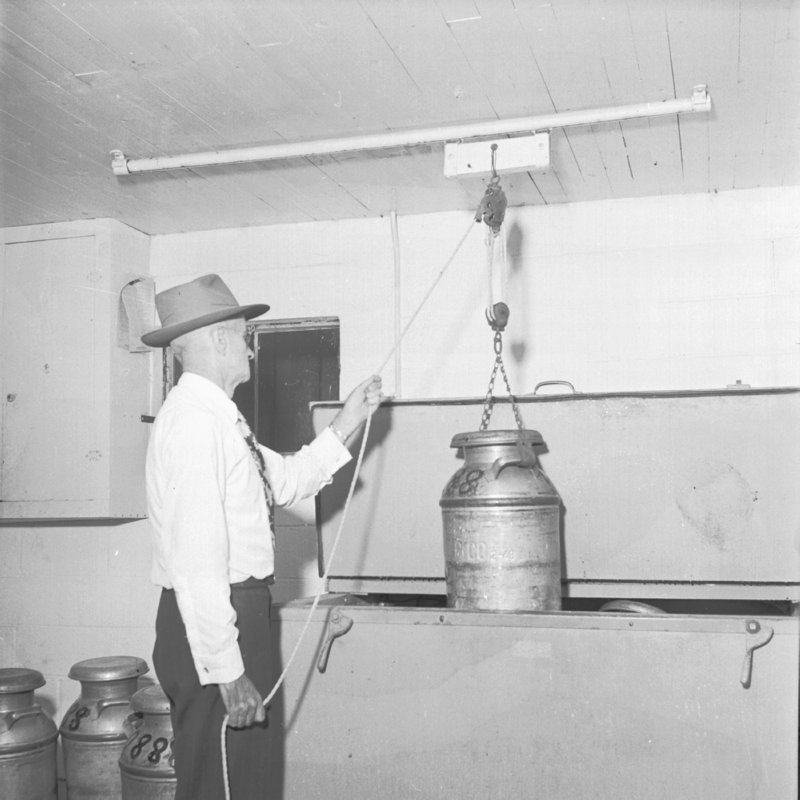 045_like with this pully system. (1951).jpg