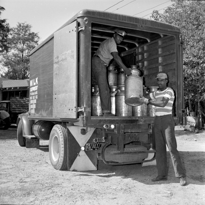049_onto the milk truck. (1954).jpg