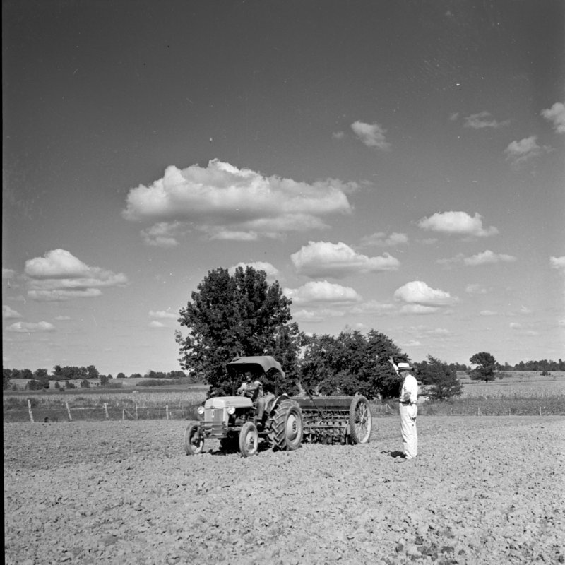 108_Plowed fields were planted with alphalfa... (undated).jpg