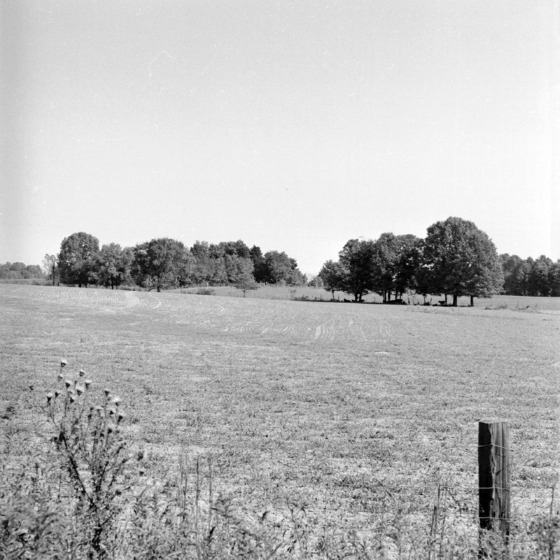 110_to develop new pastures,... (1951).jpg