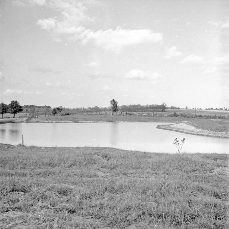 116_Ponds were dug to provide water and control runoff. (1951).jpg