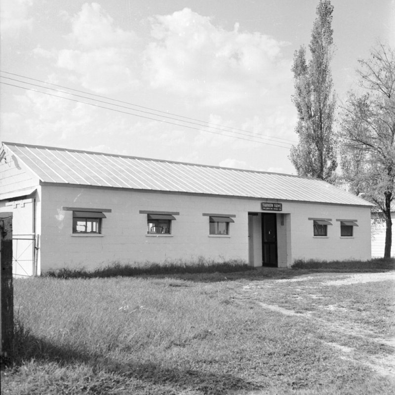 120_milk houses, like this one at Fairview Farms,... (1951).jpg
